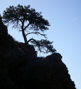 Sometimes health feels this precarious; I'll do what I have to keep from falling down the cliff.