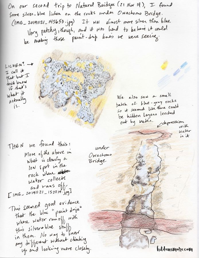 Nature journal page with colored pencil drawings of lichen on rocks. Artwork and photo by Kit Dunsmore