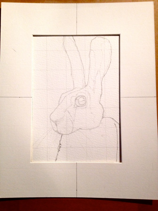Does my Hare look a mess?