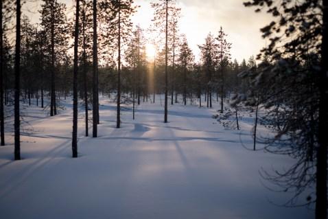 Il sorgere del sole in questo periodo
