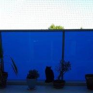 filet-de-protection-pour-chat-balcon-vitre