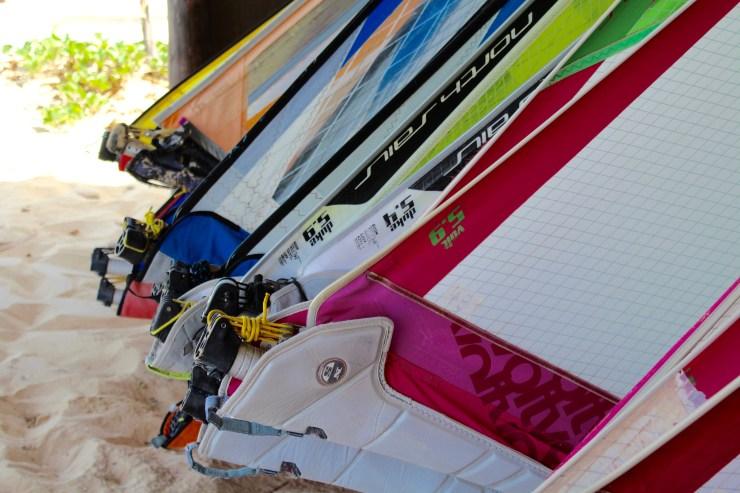 Rental of windsurf material Sal, Cape Verde