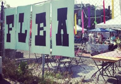 Thrifting At Kitka Design Toronto