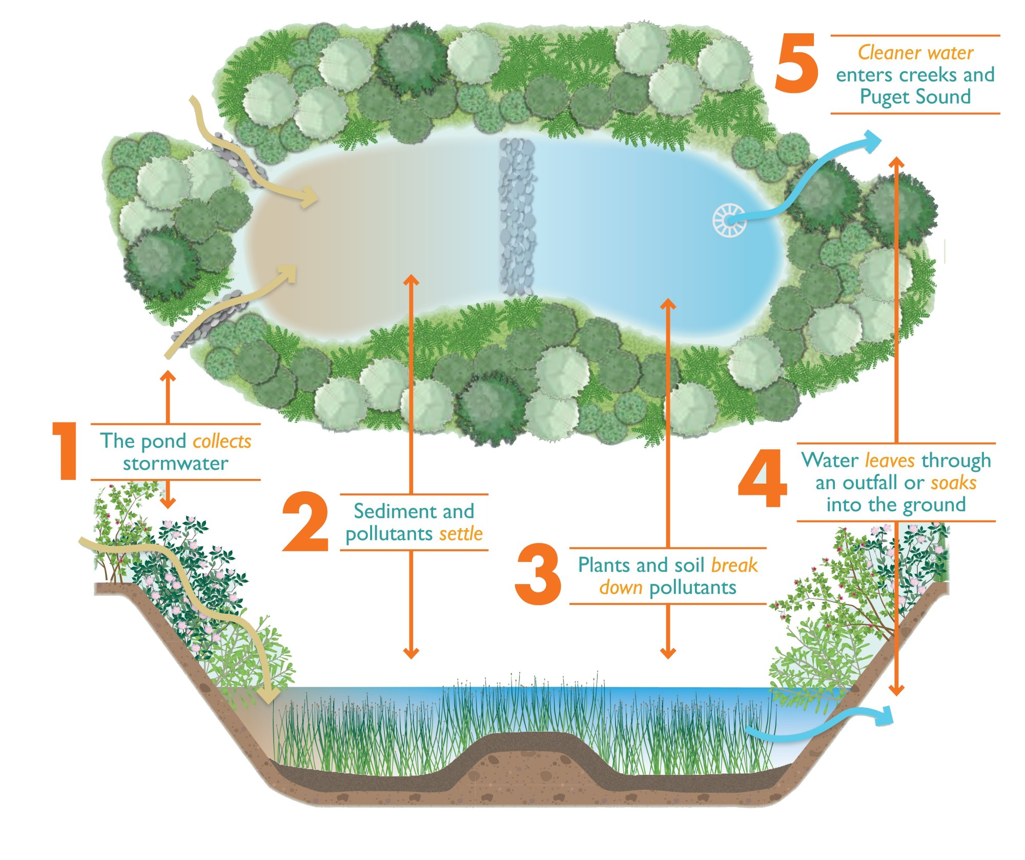 hight resolution of diagram of a stormwater