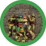 Etiquetas de Tortugas Ninjas