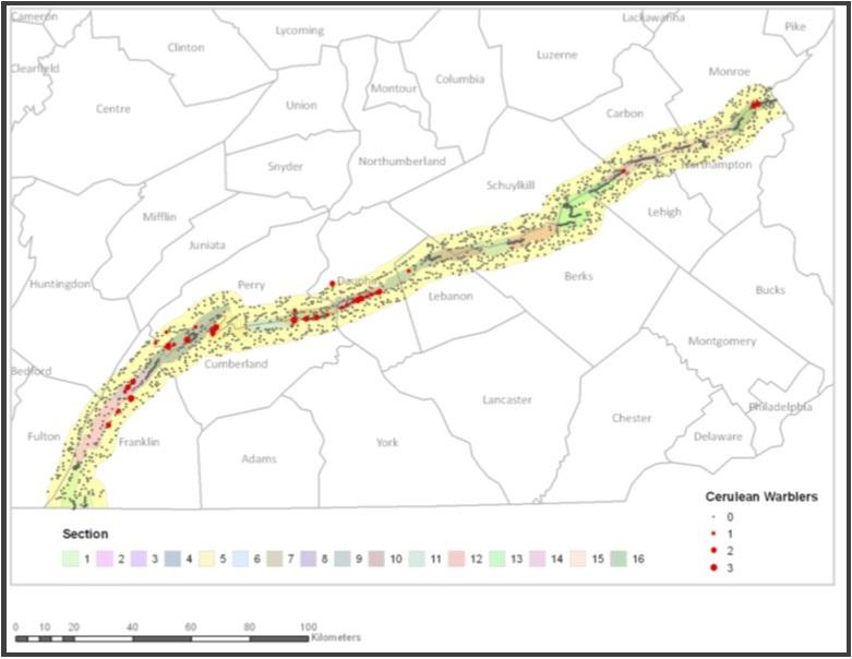 2013 Cerulean Warbler Survey