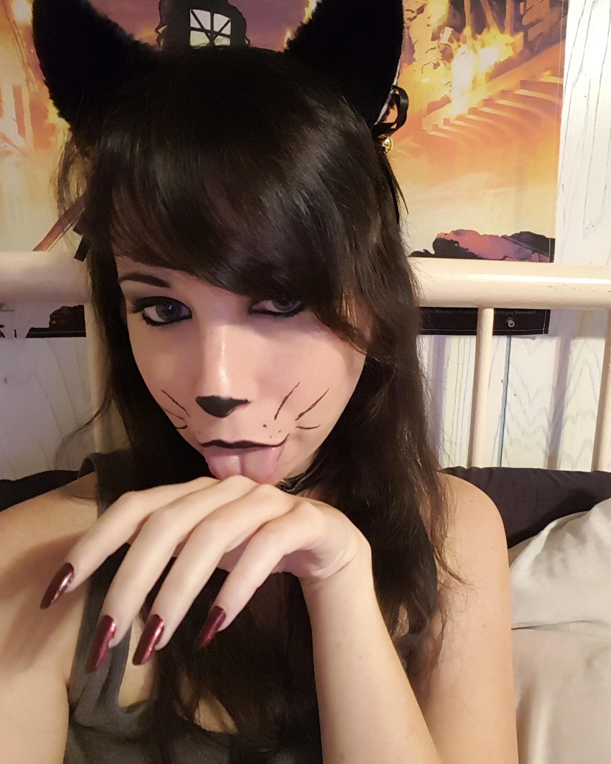 Kittenplay_kitten1