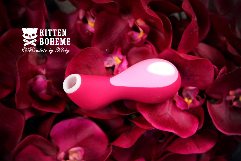 Satisfyer Penguin Pro Air-Pulsation Sex Toy