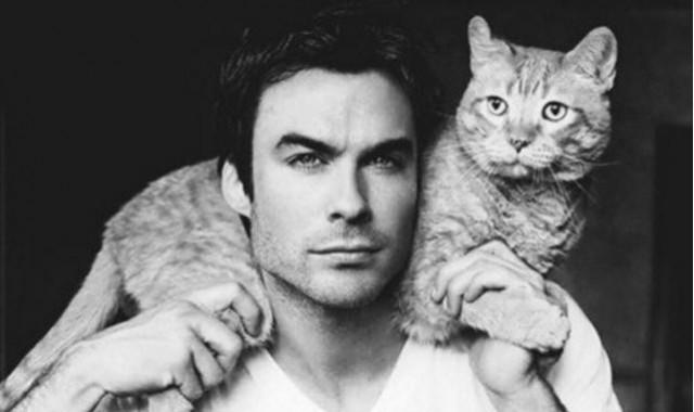 Imagini pentru man and cat