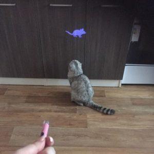 Cat Toy Laser Pointer LED Light