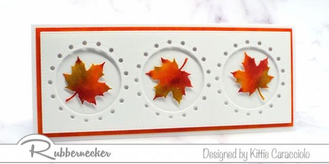Rubbernecker Blog KC-Rubbernecker-5215D-3-Maple-Leaves-4-left-640x319