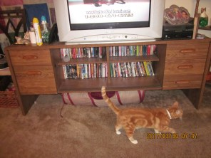 Here is the TV console with a tunnel under it.