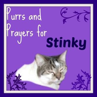 stinky purrs