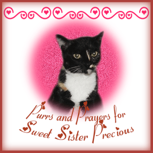 Purrs-and-Prayers-for-Sister-Precious-300x300