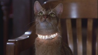 cat from outer space a
