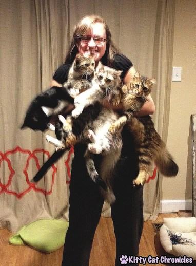 Cat Gang Hug - Hug Your Cat Day