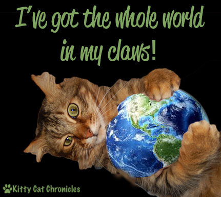 Earth Day - cat and world