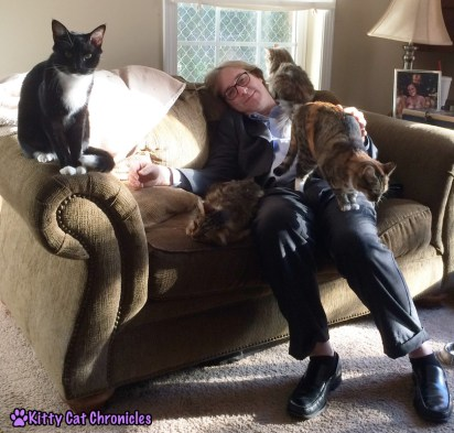 7 More Reasons to Adopt a Shelter Cat - Best Friends