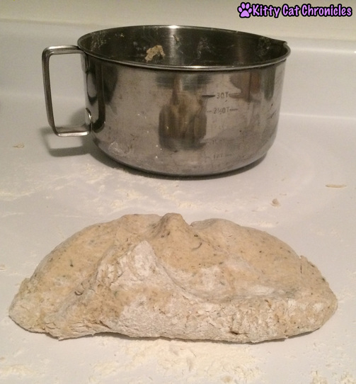 cat treat dough