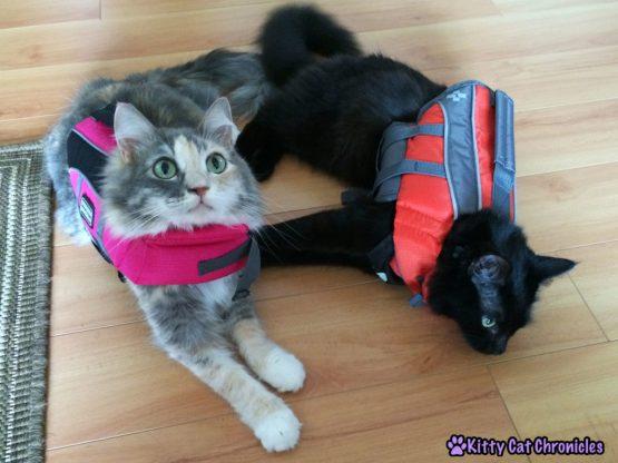 Sophie and Kylo Ren in Life Vests