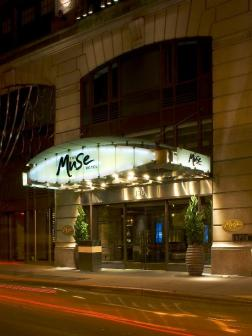 Best Cities for Cat Lovers & Adventure Cats: The Kimpton Muse Hotel, New York City