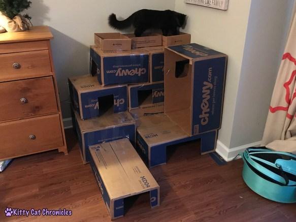 DIY Cardboard Cat Castle