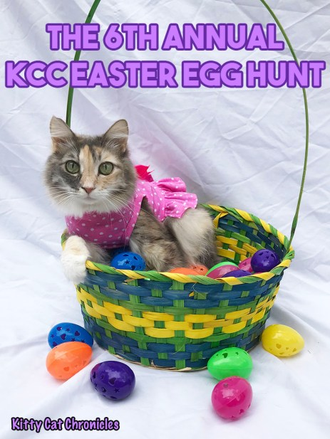 The 6th Annual KCC Easter Egg Hunt