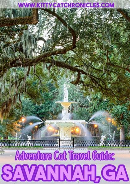 Adventure Cat Travel Guide: Savannah, GA