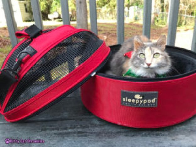 Why We Love the Sleepypod Mobile Pet Bed + a Holiday Giveaway! - a comfy pet bed