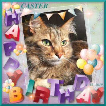 Happy 6th Birthday, Caster!