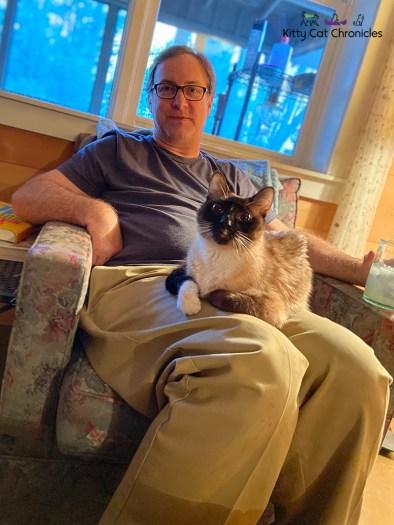 cat in a man's lap