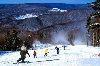Snowshoe skiing