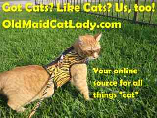 Old Maid Cat Lady