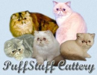 puffstuff