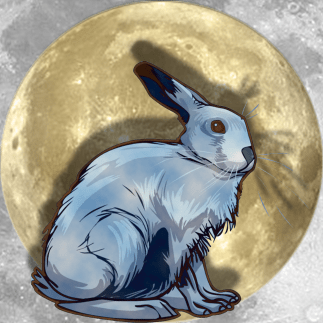 Lucky Moon Hare   China Rose