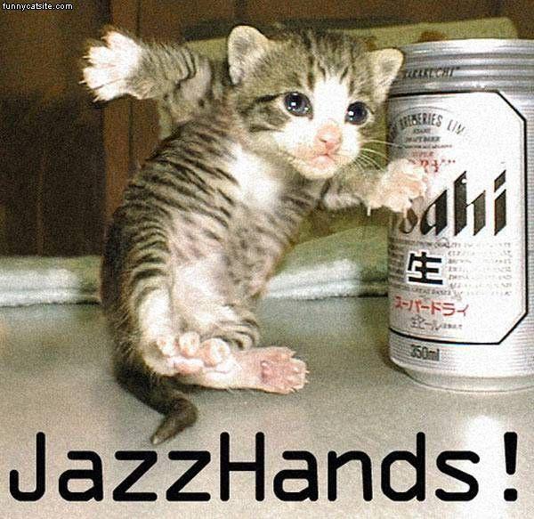 Jazz_Hands_Cat