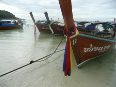Longtail boats pulled up on shore.