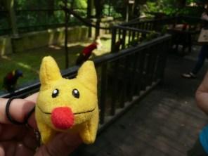 Calvin at the Bird Park, KL
