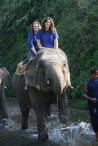 Elephant ride up the river