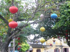 Lanterns hanging in the trees