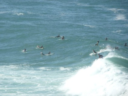 Surfers waiting for the perfect wave