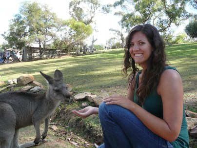 Kangaroos love food pellets
