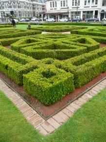 Public garden in Dunedin