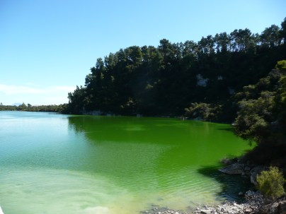 Brilliant green at Wai-o-tapu