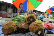 Buah Tarap muda yang dijual untuk sayur di Pekan Kiulu, Sabah