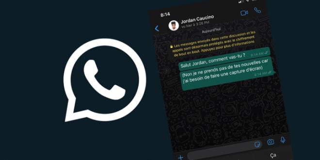 activer le mode sombre de WhatsApp sur Android et iOS