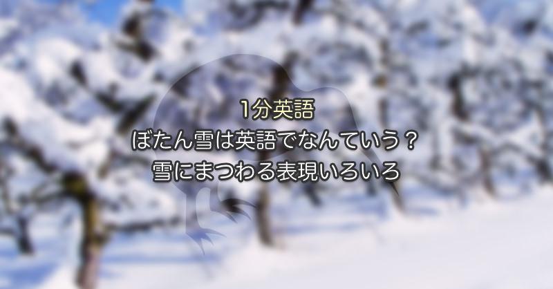 ぼたん雪は英語でなんていう?雪にまつわる表現いろいろ|1分英語