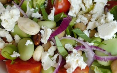 Salade aux fèves crues, pois chiche, Fêta et amandes