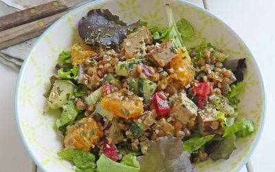 Salade complète aux lentilles, tofu fumé et petits morceaux d'orange  ( Vegan, sans céréales, léger )