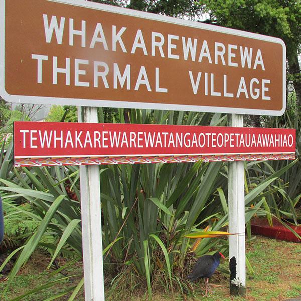 aldea maori